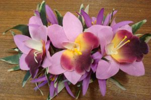 NH-CLPL Hair Clip Large Orchid Series
