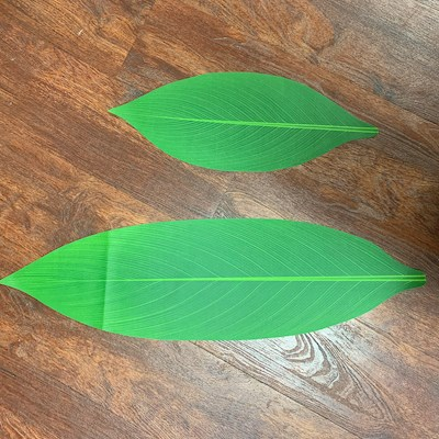 SILK TI LEAF PACKAGE