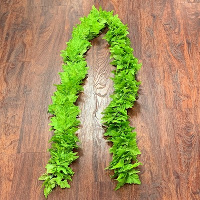 LIGHT GREEN FERN OPEN-ENDED LEI