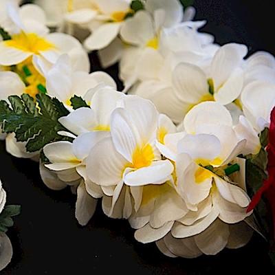 Aloha hula supply hawaiitahitianmaoriflowers double plumeria lei mightylinksfo